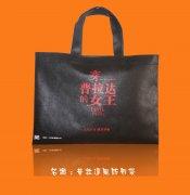 <b>无纺布礼品袋超市购物袋</b>